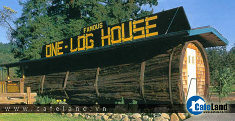 The One Log House, in Garberville (California, USA). It is a one-bedroom house hollowed out from a single log that came from a 2,100-year old redwood tree. After felling this 13 foot diameter forest giant, Art Schmock and a helper needed 8 months of hard labor to hollow out the log into a room 7 ft. high and 32 ft. long, weighing about 42 tons.