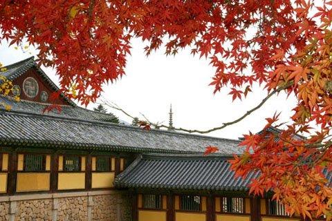 Du lịch mùa thu: Khám phá 10 điểm tuyệt đẹp
