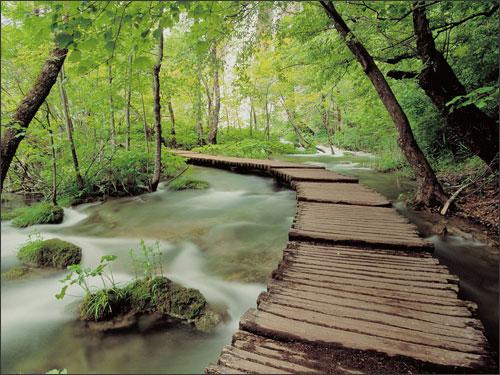 Vườn hồ Plitvice xinh đẹp
