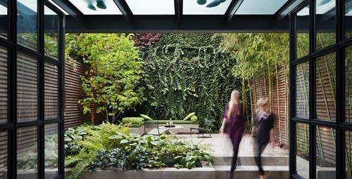 Vườn trong căn hộ ở thành phố