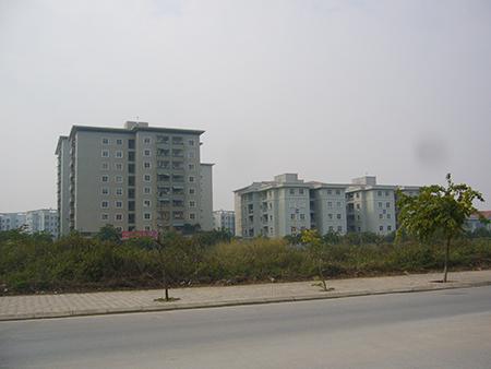 """Xông đất các sàn bất động sản: Nhâm Thìn mong bất động sản """"động đậy"""""""