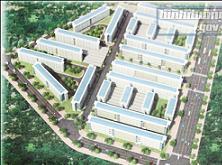Becamex IDC: Khởi công nhà ở xã hội 11.000 tỷ đồng tại Bình Dương