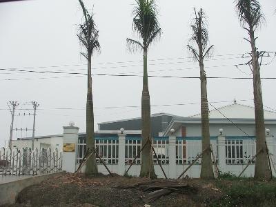 Khu công nghiệp Đông Anh (Hà Nội): 'Bán lúa non' gần chục ha đất