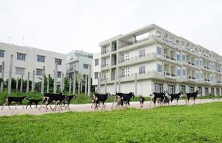 Đề xuất hàng loạt thay đổi trong chính sách đất đai