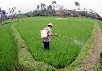 Đề xuất bỏ thời hạn giao đất nông nghiệp
