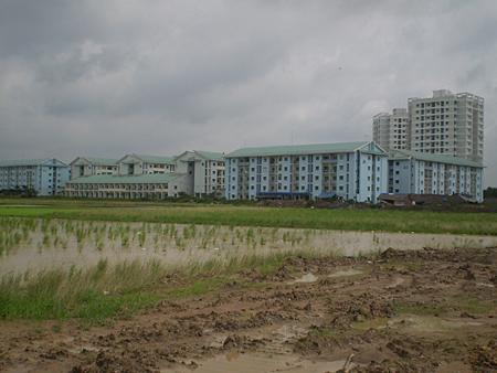 TP.Hồ Chí Minh: Thiếu nhà thu nhập thấp, thừa nhà cao cấp!