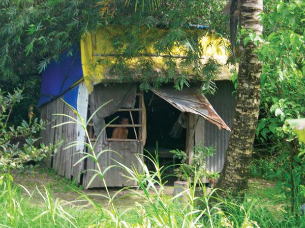 Dự án Sing Việt kéo dài 15 năm: Dân đòi thu hồi dự án