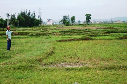 Quảng Bình: Đất làm nhà bỏ hoang, hàng chục hộ dân không có nơi ở