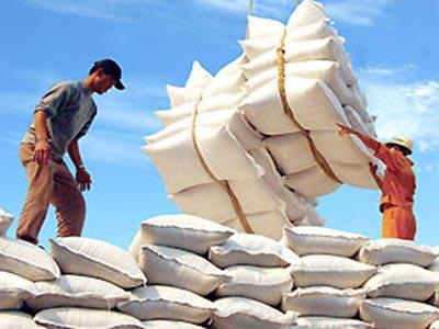 DN bất động sản,chứng khoán cũng xuất khẩu gạo