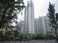 Quy hoạch thành phố và bài học Thượng Hải