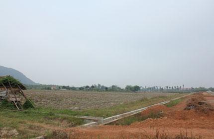 Dự án Khu nông lâm nghiệp ứng dụng ở Vĩnh Phúc: Thật, giả lẫn lộn
