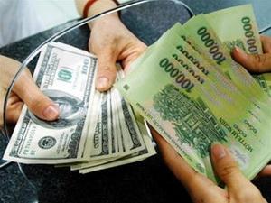 Thị trường ngoại hối của TP. Hồ Chí Minh ổn định