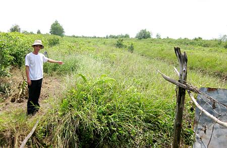 Đất trồng bị quy hoạch thành sân golf, khu công nghiệp: Nông dân điêu đứng