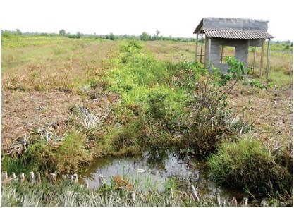 Vụ đất trồng bị quy hoạch thành sân golf - Thiệt đơn thiệt kép