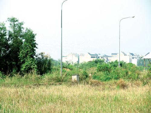 Dự án Phú Hữu: Thiệt hại do văn bản tréo ngoe