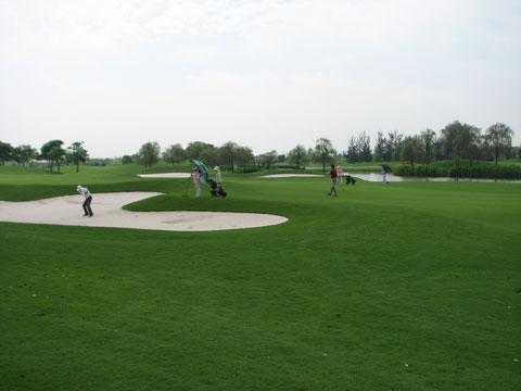 Yêu cầu kiểm tra sân golf Tân Sơn Nhất