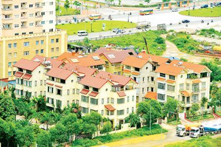 Giao 9.000 m2 đất, 5 năm xây… 20m2