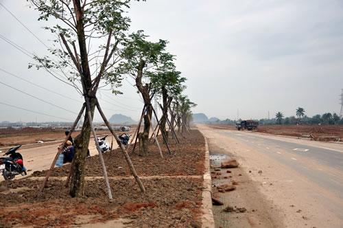 Bất động sản Đà Nẵng: Các chủ đầu tư