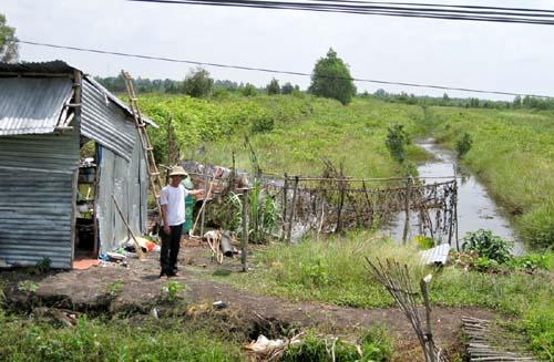 """Vì sao hàng trăm hécta đất nông nghiệp bị """"bỏ hoang""""(!?)"""