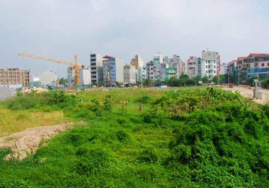 Hà Nội thu hồi gần 17.000m2 đất bỏ hoang
