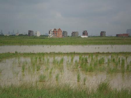 Hàng loạt khu đô thị mới, khu dân cư bị bỏ hoang