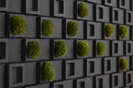 Những bức tường khác biệt