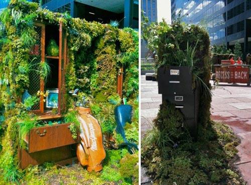 Văn phòng bị thực vật đánh chiếm