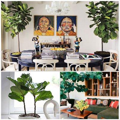 Những xu hướng trang trí nội thất