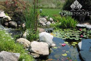 Bài trí nước trong vườn hiện đại