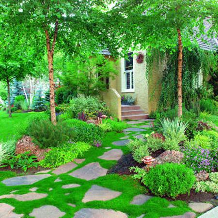 Lối nhỏ trong vườn tràn ngập sắc xuân