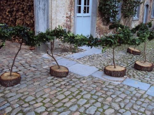 Những sáng tạo độc đáo từ thân cây