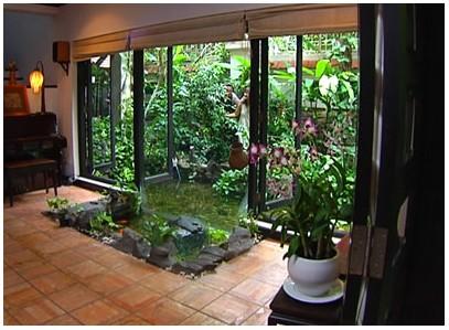 Xinh xinh vườn nhà