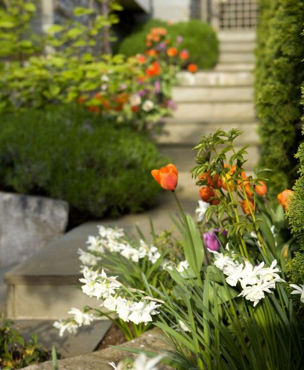 Khu vườn tuyệt đẹp mùa xuân
