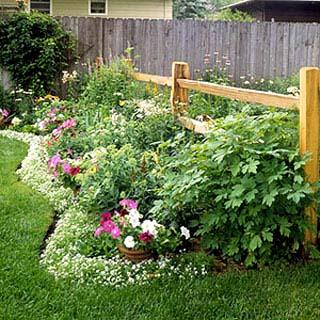 Đường viền cho khu vườn