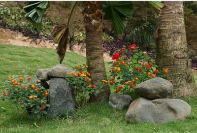 Làm đẹp vườn bằng đá tự nhiên