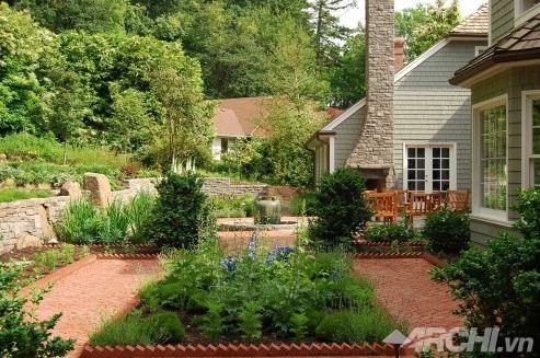 Đường viền ấn tượng cho khu vườn thêm xinh