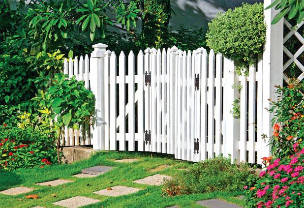 Rào trắng là xinh!