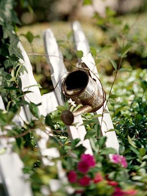 Đồ cũ với vườn xinh (tt)