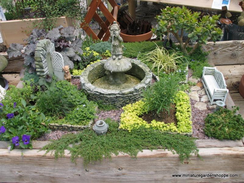 Khu vườn thu nhỏ