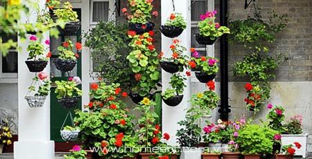 Vườn treo cho nhà thêm xanh