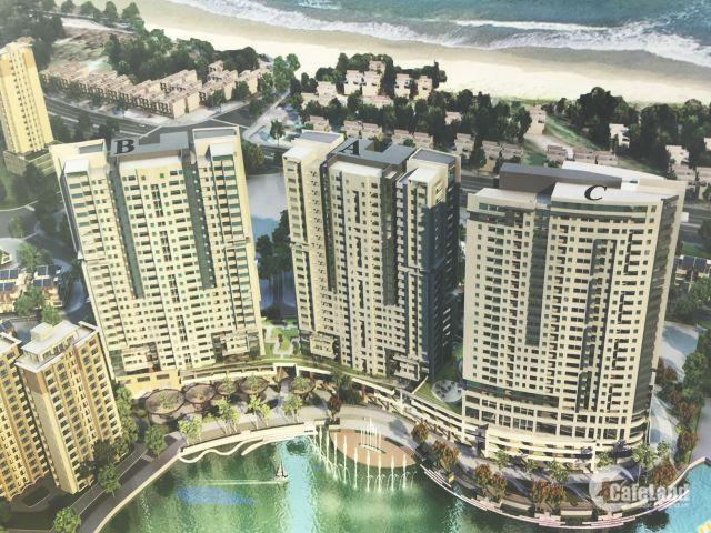 Cần cho thuê Căn hộ cao cấp tầng 20, View Biển rất đẹp tại Lô B Chung cư Phoenix_Vũng Tàu