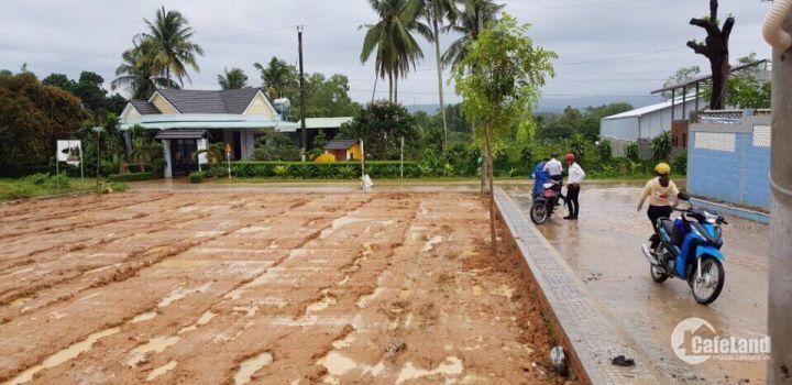 Bán đất MT đường Cây Thông Ngoài, sổ hồng riêng 14TR/m2, CK 1tr/m2