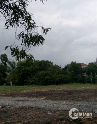 Bán đất mặt tiền chợ Hưng Long, Bình Chánh, xây dựng tự do, SHR. Lhệ: 0981.900.791