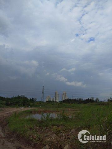 bán đất TCLN, 1000m2 chỉ 5,5tr/m2, hẻm xe hơi 6m, vị trí đẹp giáp Phú Mỹ Hưng 2, đường Phạm Hữu Lầu