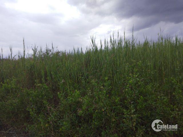 bán gấp lô đất thổ vườn 500m chỉ 2 tỷ 6 tặng 100m sổ hồng riêng hẻm 6m lh chính chủ 0938847327