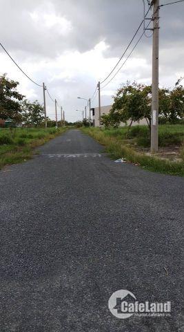 Đất chính chủ đối diện KCN Cầu Tràm 5x20m2 SHR/GPXD xây tự do cần khách đầu tư có thiện chí