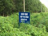 Chỉ cần 150tr có ngay 1 lô đất nền vị trí cực đẹp tại Xã Phước Bình-Long Thành-Đồng Nai.