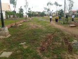 Bán đất Long An mặt tiền đường Có Sổ Đỏ sang tên ngay gần chợ khánh hậu, trường đại học