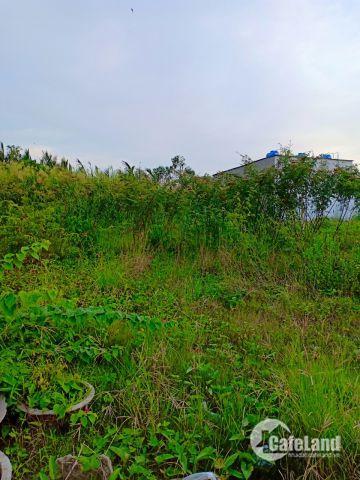 Cần sang nhượng lô đất DT:260m2 hẻm đường Lê Văn Lương giá:16tr/m2