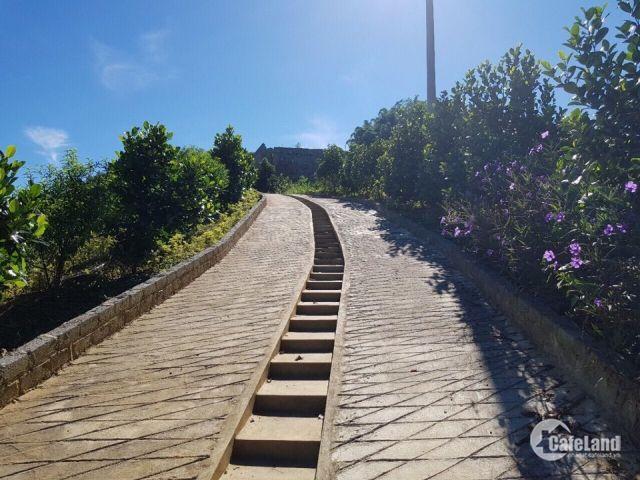 Bán 5ha đất trang trại tuyệt đẹp tại Kỳ Sơn, Hòa Bình